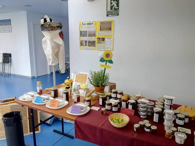 Cata de miel (www.beegardenmalaga.com)
