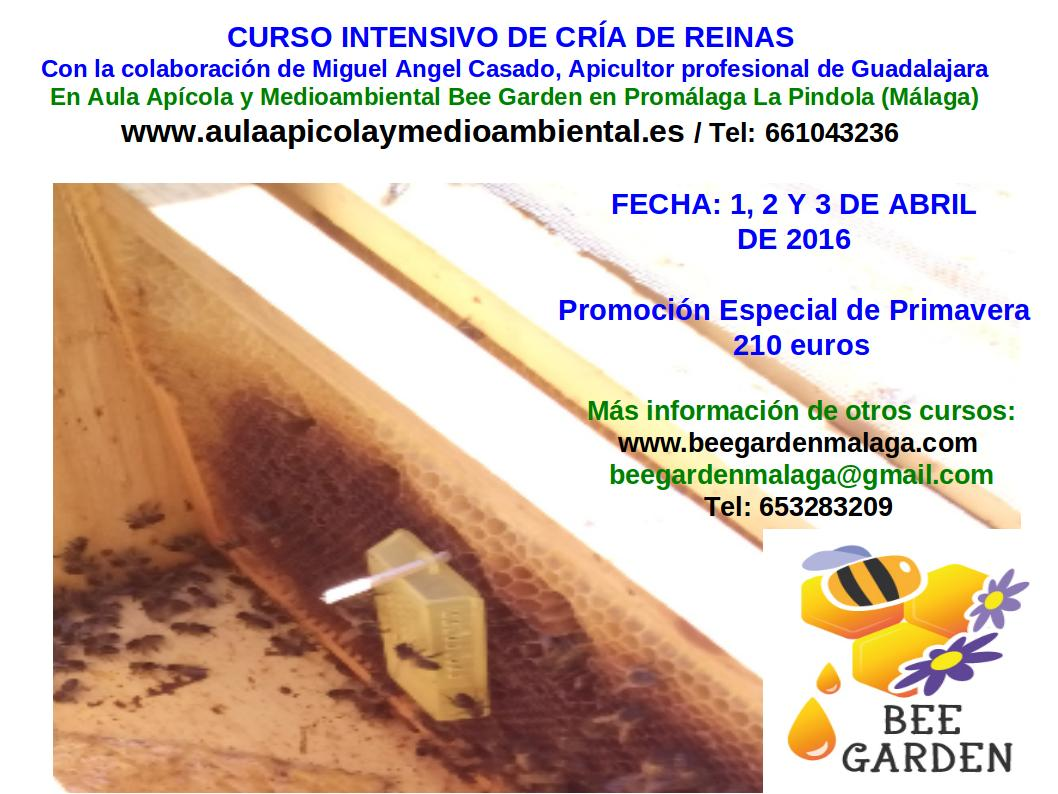 Evento sobre los polinizadores blog de bee garden for Horario oficina ing mostoles